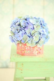 flower_online04